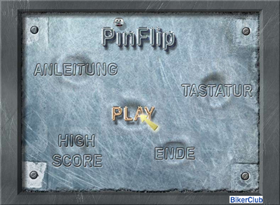 Pin Flip - Aral Game